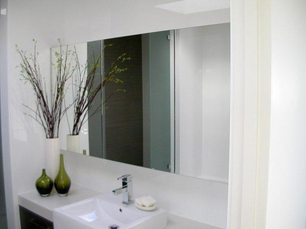 Alligator Glass Mirrors Example